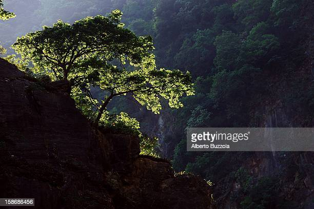 The cliffs of Taroko National Park, the country's most visited spot. The creation of the park goes back to 1937 when the Japanese government, who had...