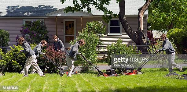 the clones do some yard work - cloning stock pictures, royalty-free photos & images