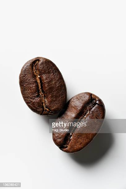 The close-up of the coffee bean