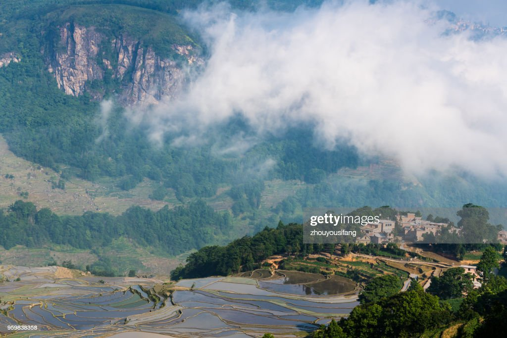 The cloud sea and the terraced fields and village : Foto de stock