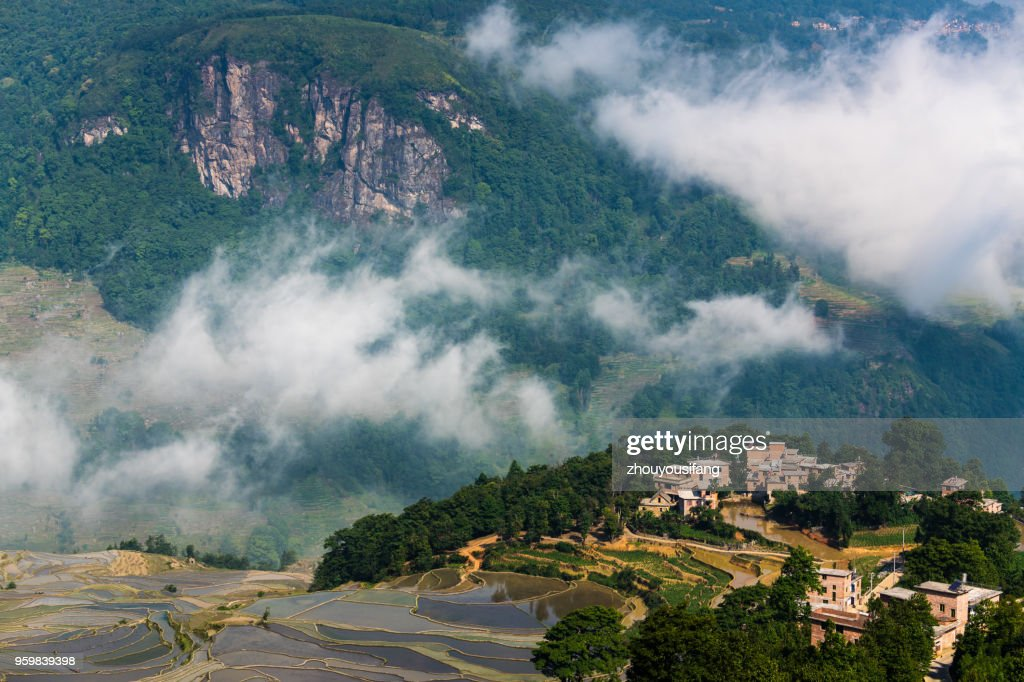 The cloud sea and the terraced fields and village : Stock Photo