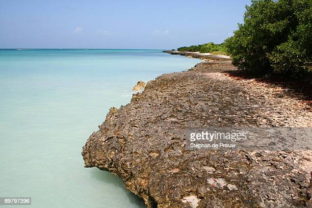 the coast at eagle beach, aruba - stephan de prouw stock pictures, royalty-free photos & images