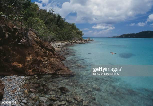 The coast by Magens Bay Saint Thomas Island US Virgin Islands United States of America