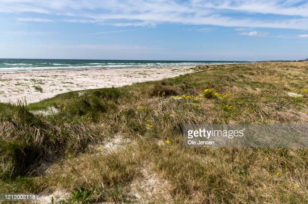 The coast line where a nearby Iron Age defence belt where found by Danish archaeologist at the soon to come Fehmarnbelt Tunnel construction site on...