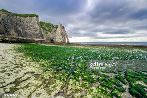 the coast of english channel in outflow and cliff porte d'aval as background. etretat, normandy, france - cliff stock pictures, royalty-free photos & images