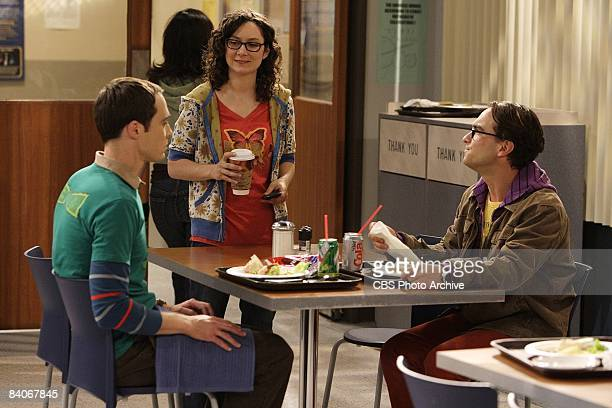 'The Codpiece Topology' When Leonard sees Penny with a handsome new guy he enters into a rebound relationship with Sheldon's nemesis Leslie Winkle on...