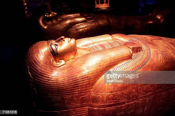 The coffin of Tjuya, a non-royal in-law of Amenhotep is displayed with the touring exhibit of Egypt's King Tutankhamun at the Field Museum May 25,...