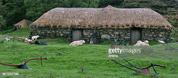 The Colbost Croft Museum / Folk Museum showing nineteenth century Hebridean crofter's blackhouse with heather-thatched roof on the Scottish Isle of...