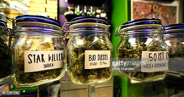 April 25, 2016: The Colfax Pot Shop takes pride in their marijuana flower, on display at their recreational cannabis shop on Colfax Ave in Denver, CO.