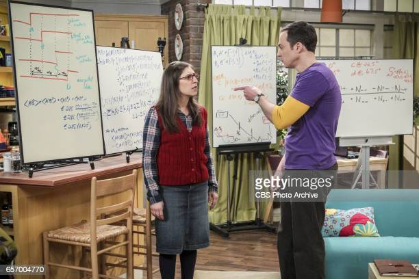 'The Collaboration Fluctuation' Pictured Amy Farrah Fowler and Sheldon Cooper Leonard Penny and Raj adjust to their new living arrangement and...