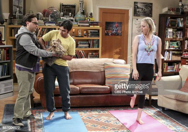 'The Collaboration Fluctuation' Pictured Leonard Hofstadter Rajesh Koothrappali and Penny Leonard Penny and Raj adjust to their new living...