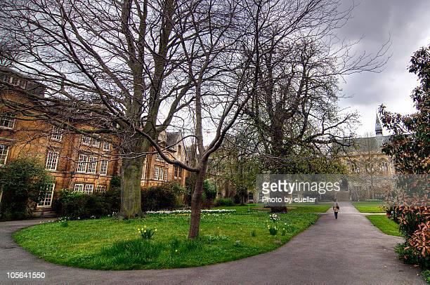 the college - oxford oxfordshire stock-fotos und bilder