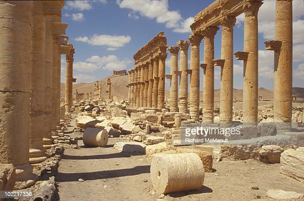 The Colonnade Street Palmyra