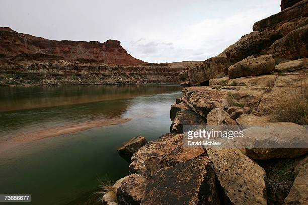 The Colorado River in Marble Gorge east of Grand Canyon National Park is being visited by rare and endangered California condors March 22 2007 west...