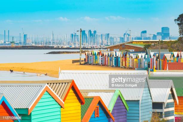 the colorful brighton bathing boxes, melbourne, australia - melbourne australia foto e immagini stock