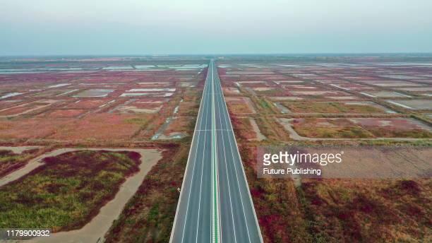 SIHONG CHINA NOVEMBER 3 2019 The colorful Hongze Lake Wetland in Sihong County Suqian city east China's Jiangsu Province Nov 3 2019 PHOTOGRAPH BY...