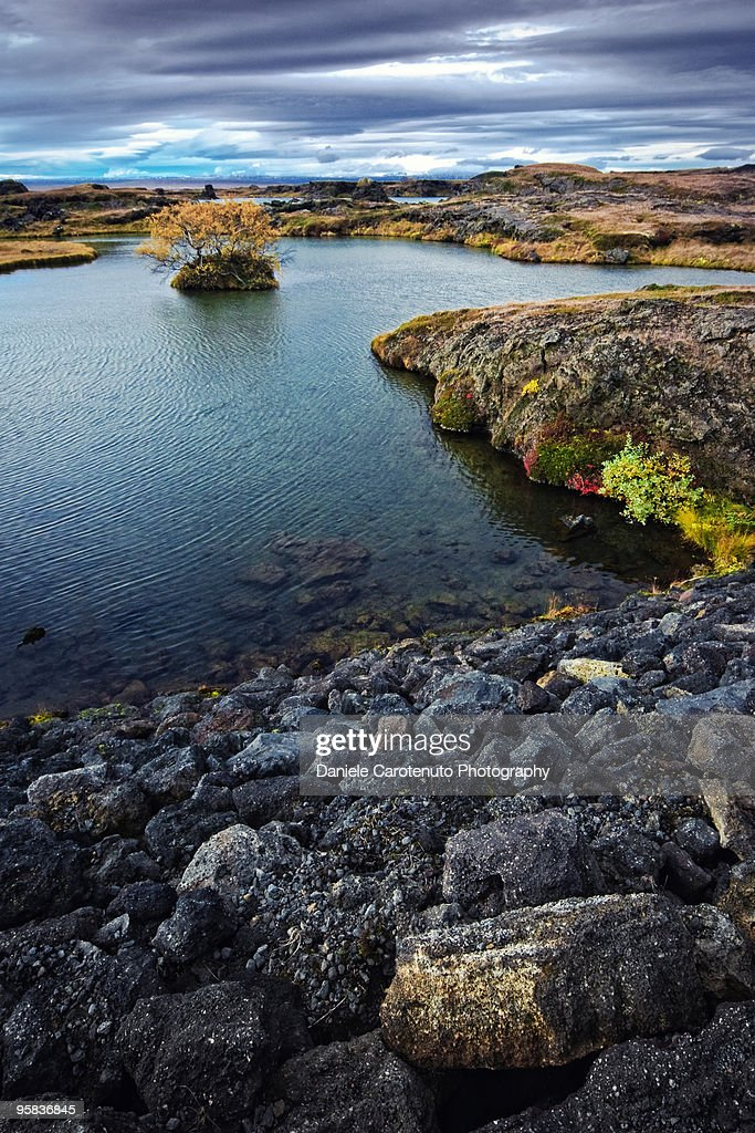 The colorful side of Myvatn : Stock Photo