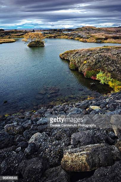 the colorful side of myvatn - daniele carotenuto stock-fotos und bilder