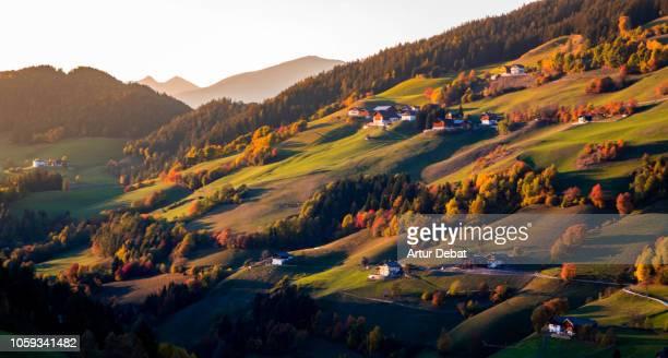 the colors of autumn season in the dolomites mountains. - alto adige foto e immagini stock