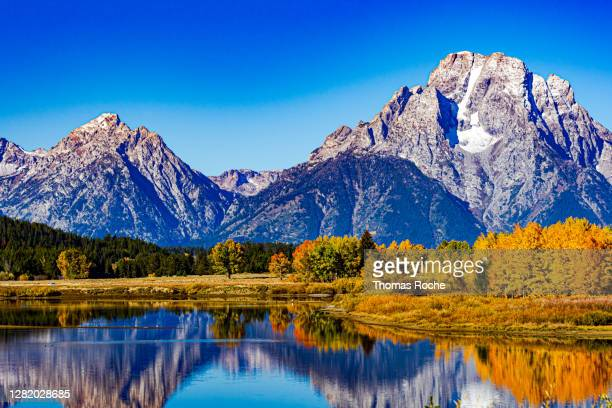 the colors of fall in the grand tetons - snowcapped mountain stock pictures, royalty-free photos & images