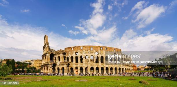 the colosseum under blue sky - colosseum stock photos and pictures