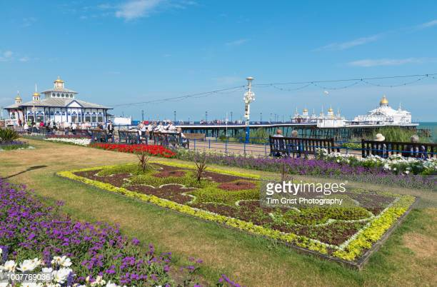 the colourful carpet gardens and pier, eastbourne, east sussex, uk - eastbourne stock pictures, royalty-free photos & images