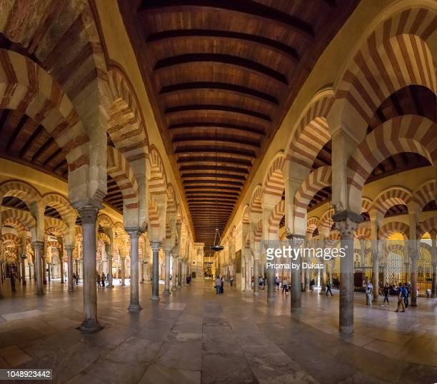 The column hall of the mosque cathedral Mezquitacatedral de Cordoba Cordoba Spain