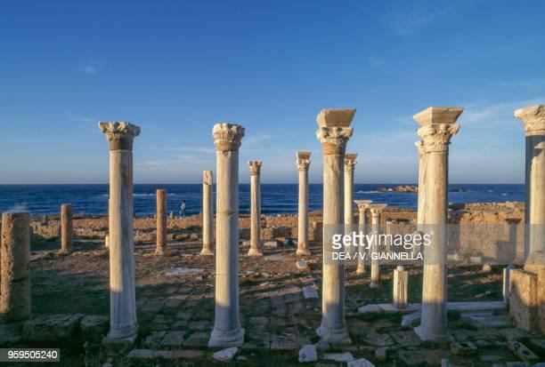 The columns of the central basilica Apollonia near Susah Libya Byzantine civilization 4th5th century