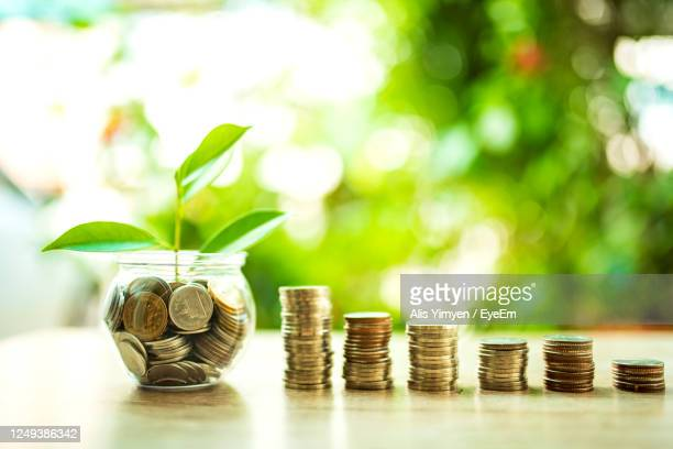 the concept of saving money for the future and building financial stability and sustainable living - responsibility stock pictures, royalty-free photos & images