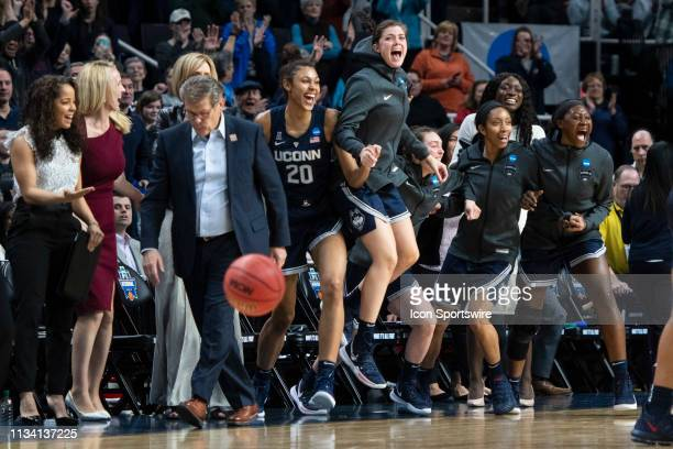 The Connecticut Huskies bench reacts to securing the victory with seconds to go in the second half of the game between the Connecticut Huskies and...