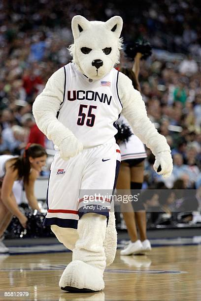 The Connecticut Huskies mascot performs on the court during a break in the action against the Michigan State Spartans during the National Semifinal...