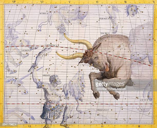The Constellation of Taurus the Bull and Orion by James Thornhill