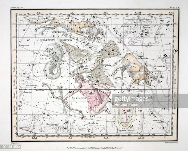 The Constellations Aquila et Antinous Scutum Sobieski Taurus Poniatowski Sagitta Valpecula et Anser and Delphinus from A Celestial Atlas by Alexander...