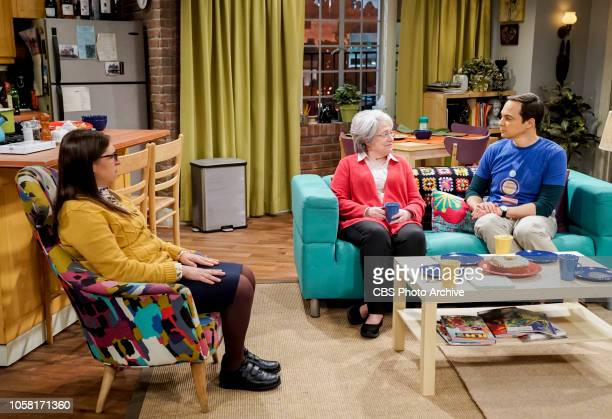 'The Consummation Deviation' Pictured Amy Farrah Fowler Mrs Fowler and Sheldon Cooper Sheldon tries to bond with Amy's father but when Wolowitz lures...