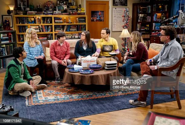 'The Consummation Deviation' Pictured Rajesh Koothrappali Bernadette Howard Wolowitz Amy Farrah Fowler Sheldon Cooper Penny and Leonard Hofstadter...