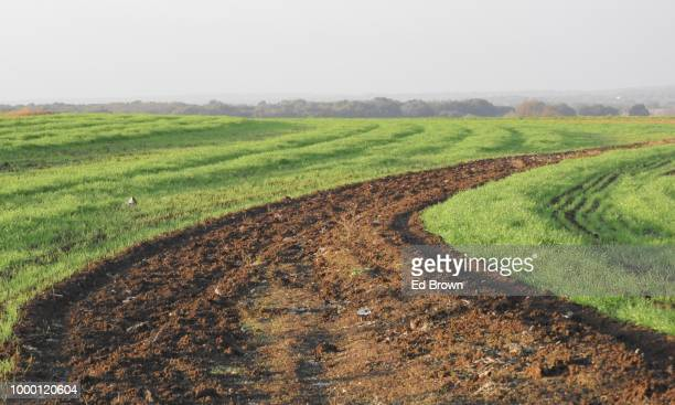 The contour lines of a field in production for fifty years