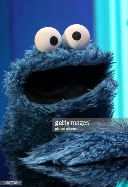 """The Cookie Monster sits at the piano in the studios of """"Sesame Street"""" during a photocall in Hamburg,Germany, 05 February 2013. Photo:..."""