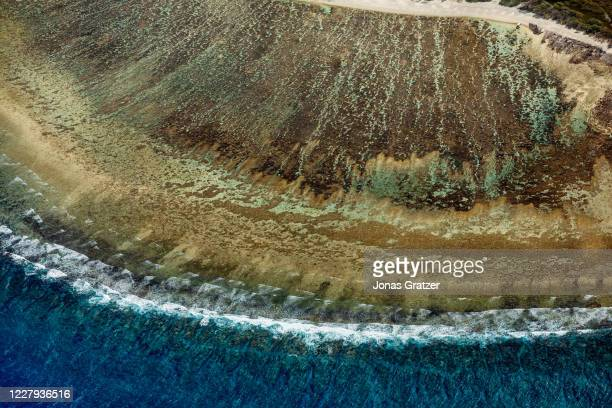 The coral reef at lady Elliot island in Queensland, Australia. In the quest to save the Great Barrier Reef, researchers, farmers and business owners...