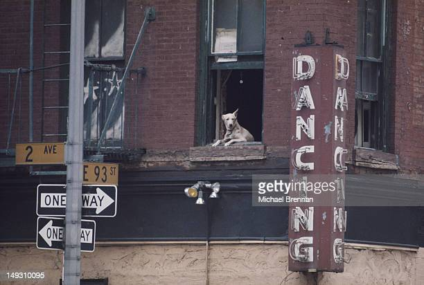 The corner of Second Avenue and East 93rd Street in Manhattan during a hot summer New York City circa 1985