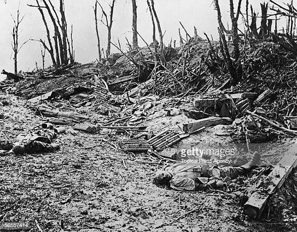 The corpses of German soldiers lying amidst the debris in Louage Wood during the Somme Campaign World War I 10th October 1916