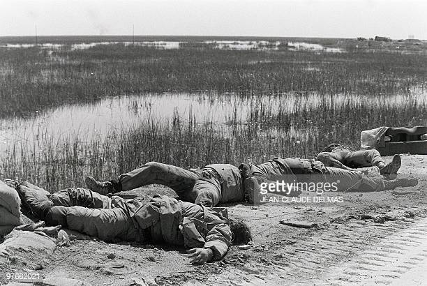 The corpses of Iranian soldiers lay in the swamp near the Iraqi city of al-Howeizah, north of Basra, 22 March 1985 after a fierce battle opposed...