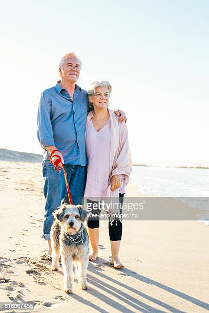 the cost of retirement happiness - americas next top dog stock pictures, royalty-free photos & images