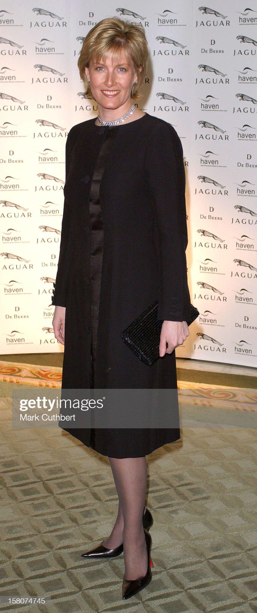 The 'Celebration Of The Little Black Dress' Gala : News Photo