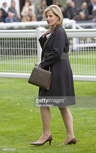 The Countess Of Wessex Visits Ascot Racecourse For The Mile Championship Meeting