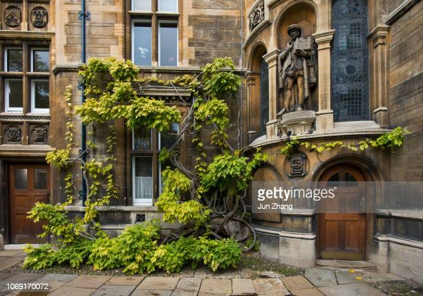the court of gonville and caius college, cambridge university - cambridge stock pictures, royalty-free photos & images