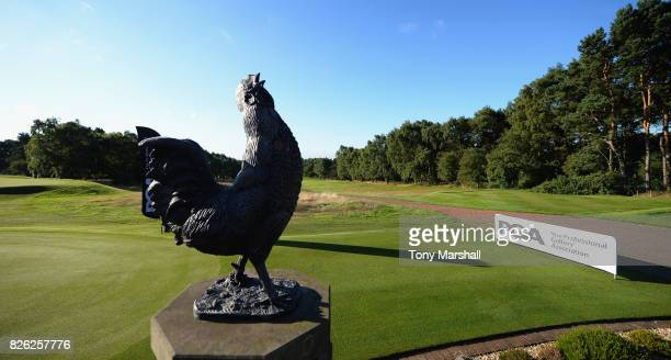 The Coxmoor statue next to the 1st fairway during Day Three of the Galvin Green PGA Assistants' Championship at Coxmoor Golf Club on August 4 2017 in...