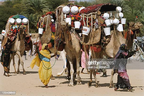 The crater Koboue in Chad in November 2005 Camel used a palanquin for women children and young goats