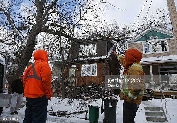 The crew from Ontario Line and Tree Clearing services plan a course of action on how to deal with a large 50cm branch resting over two houses on...