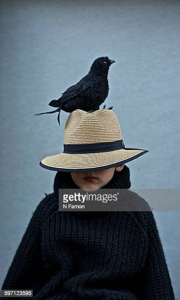 The crow and the boy