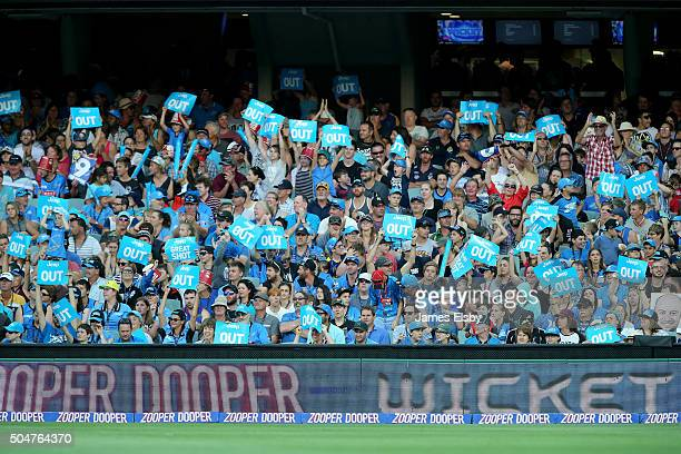 The crowd celebrate a wicket during the Big Bash League match between the Adelaide Strikers and the Hobart Hurricanes at Adelaide Oval on January 13...